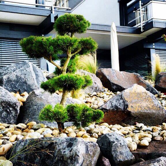 Basalt-Bruchsteine, kombiniert mit Flusskies (Oberrheinkies) als - gartenideen mit naturstein