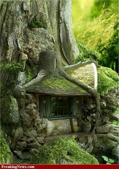 Tree House in the Forrest ~ cool looking place ~ via Freak show strange pictures - photoshop contest