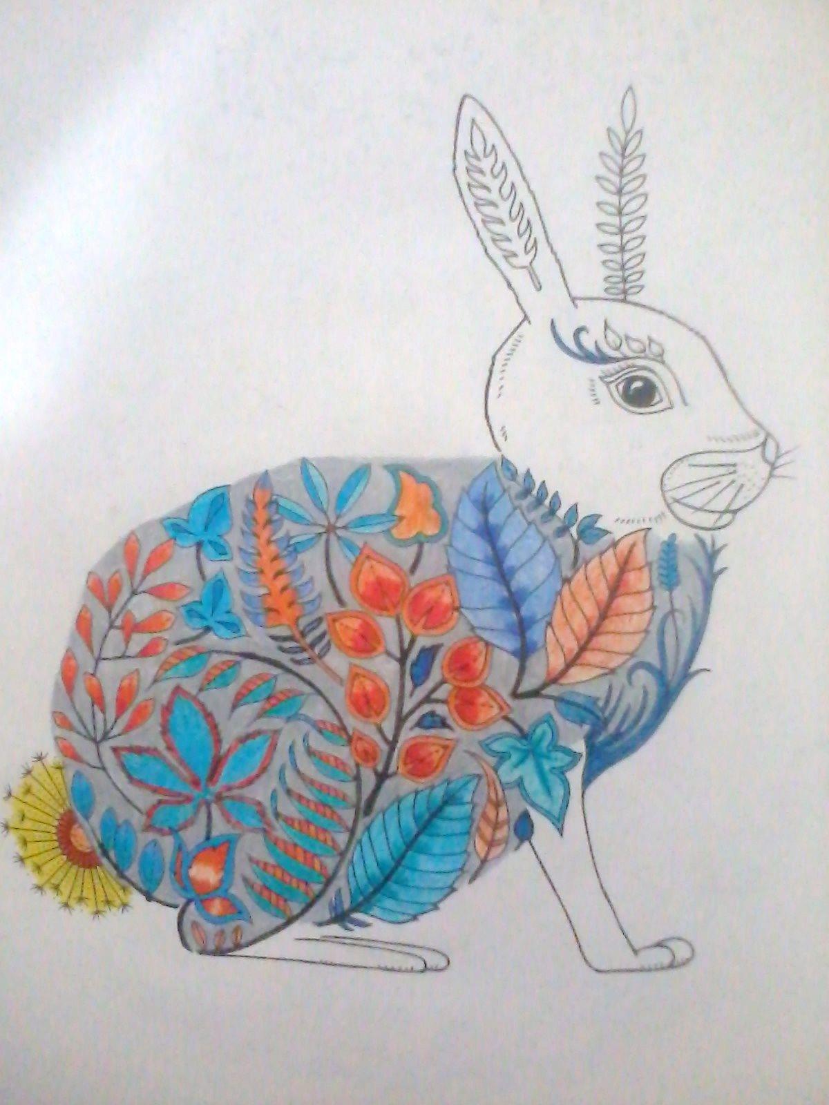 picture book hare colored - photo #29