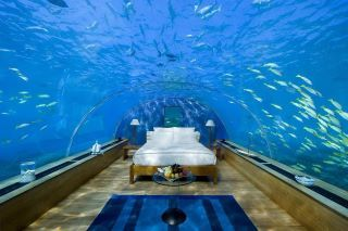 Maldives Rangali Islands resort's underwater hotel room BY DAY :DD  By: I'll bet that you'll leave with a Smile
