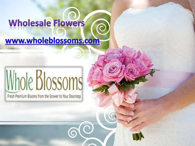 If you are planning to buy wholesale flowers for a special wedding decoration, then your search ends here at http://www.wholeblossoms.com/.
