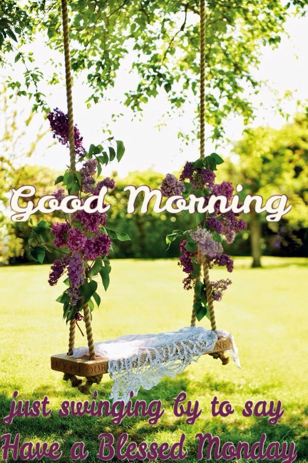 Good Morning Just Swinging By To Say Have A Blessed Monday