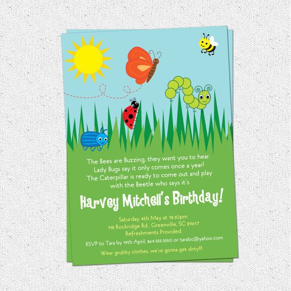 Bug Insects Birthday Party Invitation Summer Erfly