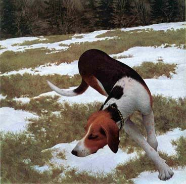 Pin By Lou Bendrick On Painting Inspirations Dog Portraits Art Alex Colville Colville