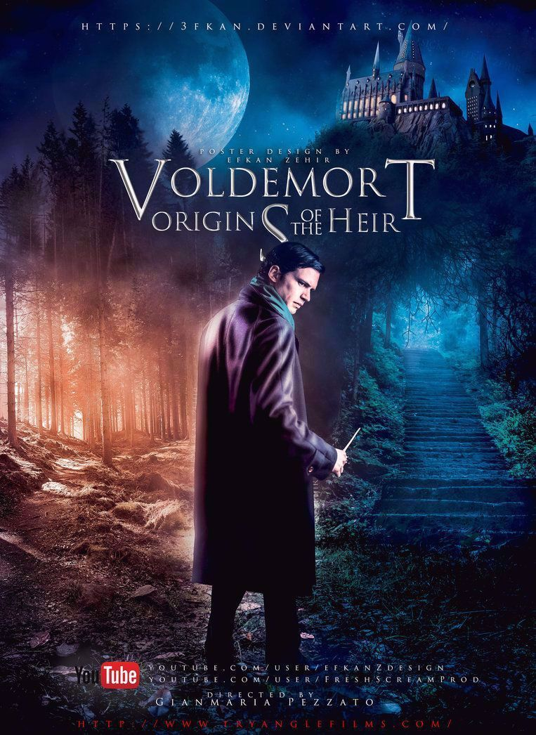 Sinopsis Voldemort Origins Of The Heir : sinopsis, voldemort, origins