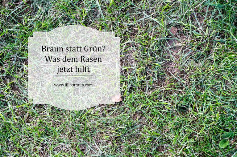 Braun Statt Grun Wie Sie Einen Vertrockneten Rasen Wieder Fit Bekommen Lilli Straub Den Traumgarten Planen Traumgarten Rasen Grun