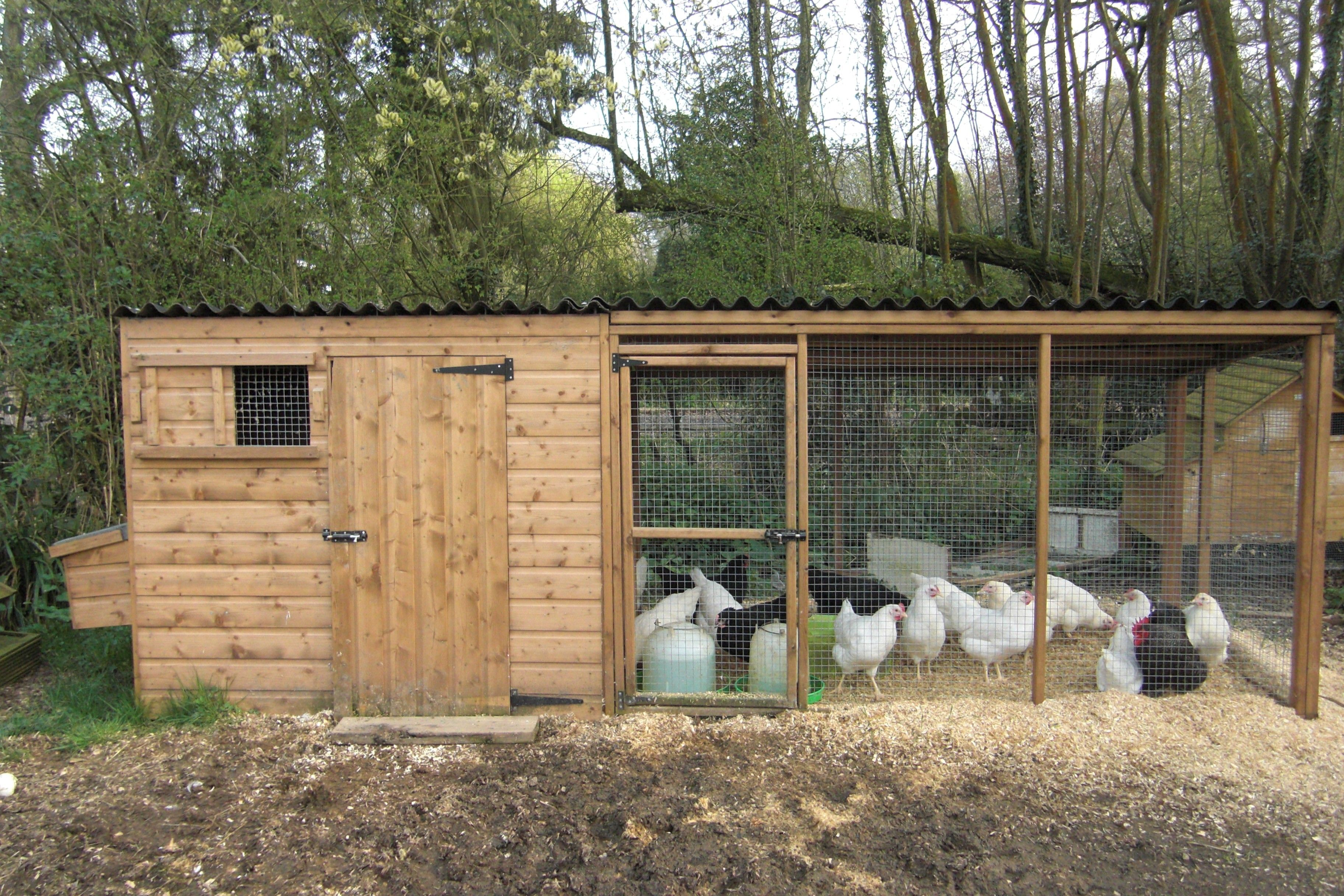 Chicken House chicken houses |  house with nestboxes and large adjoining run