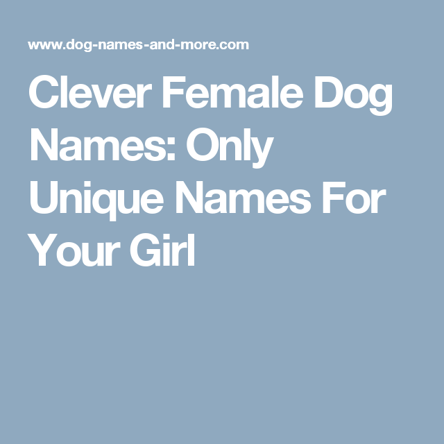 Clever Female Dog Names Only Unique Names For Your Girl Female Dog Names Female Puppy Names Unique Dog Names