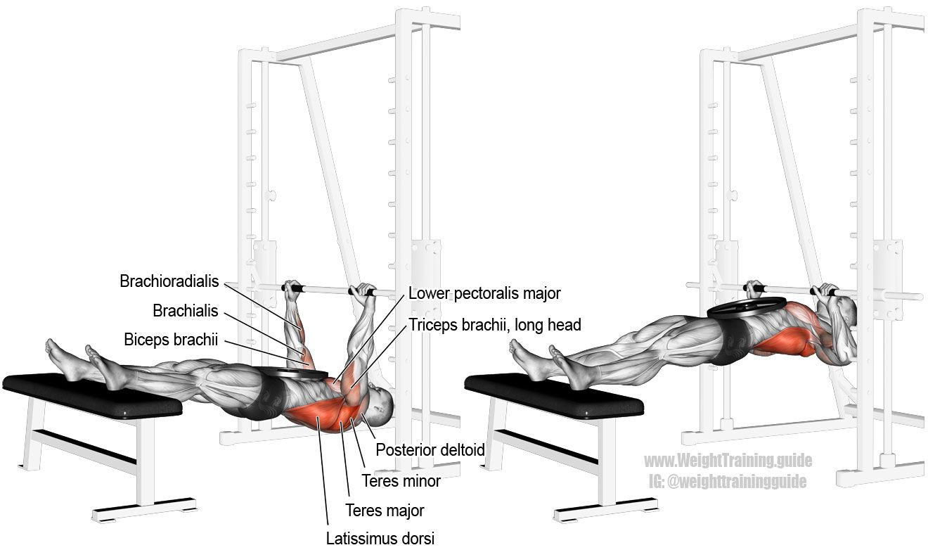 Weighted Inverted Row Exercise Guide And Video