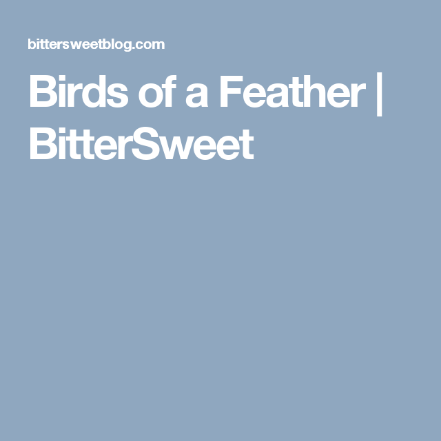 Birds of a Feather | BitterSweet