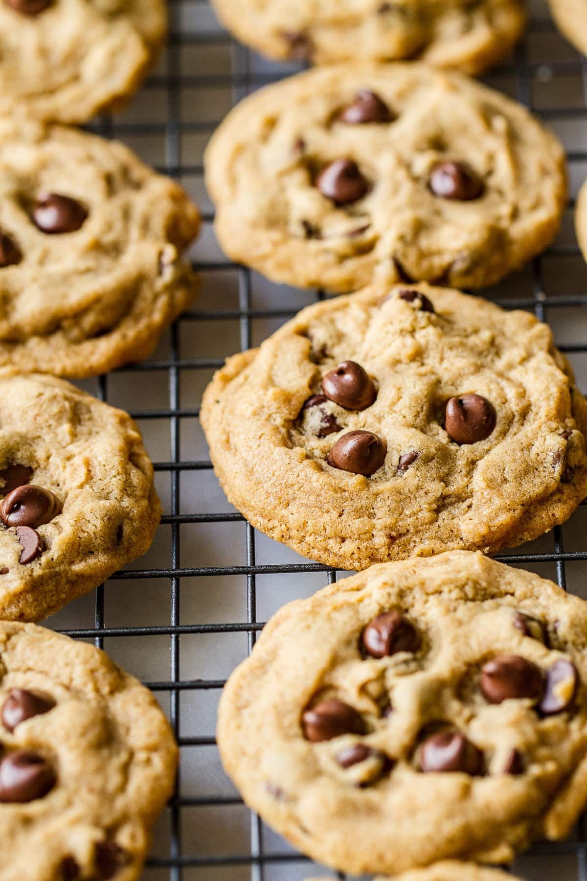 My All Time Favorite Vegan Chocolate Chip Cookie Recipe No