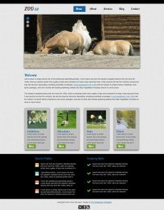 ZOO co - Free Responsive Template #9 - ready to download