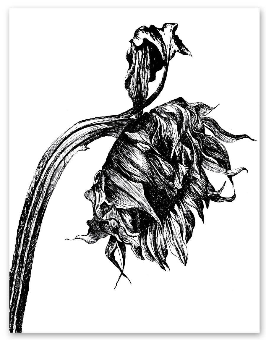 Black sunflower card blank greeting card flower art floral design