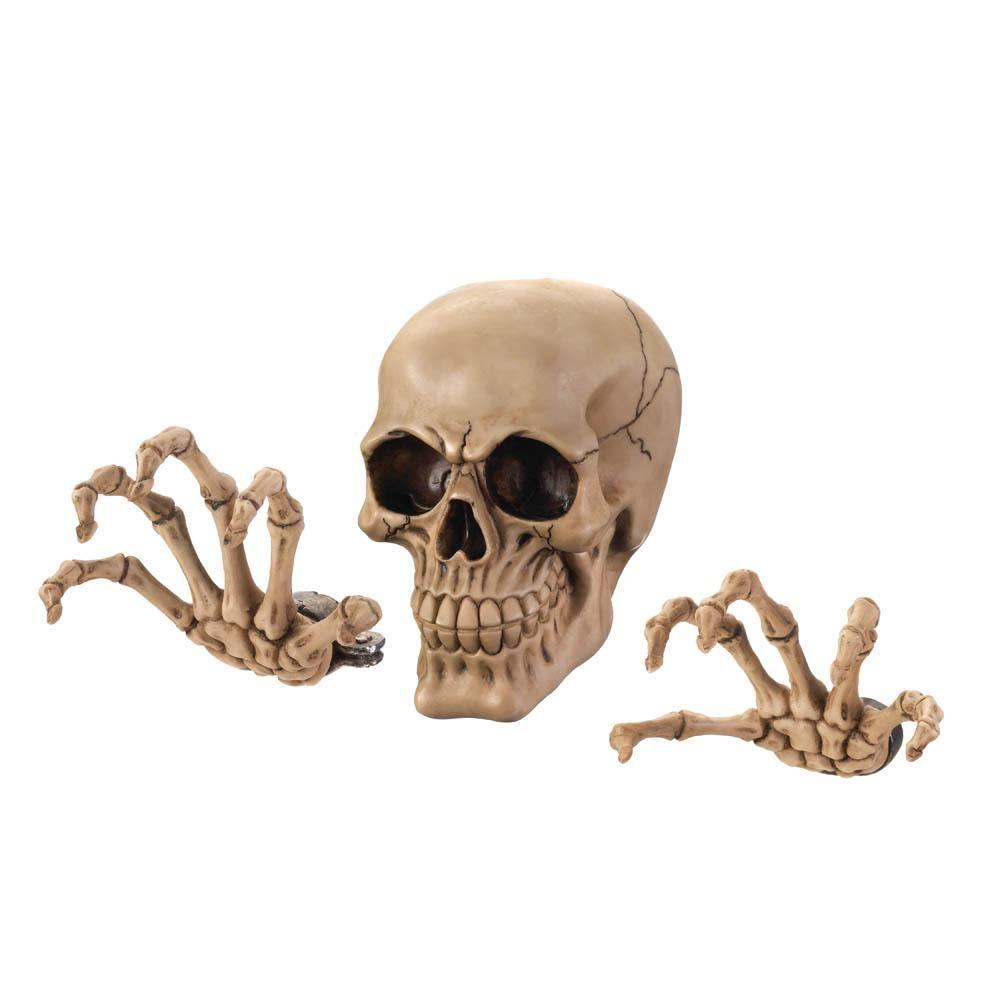 Photo of Skeleton Wall Decor Set