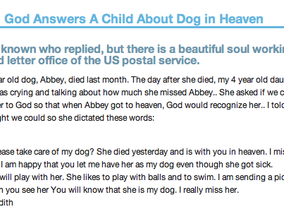 God Answers A Child About Dog in Heaven | Dog heaven, Dog ...
