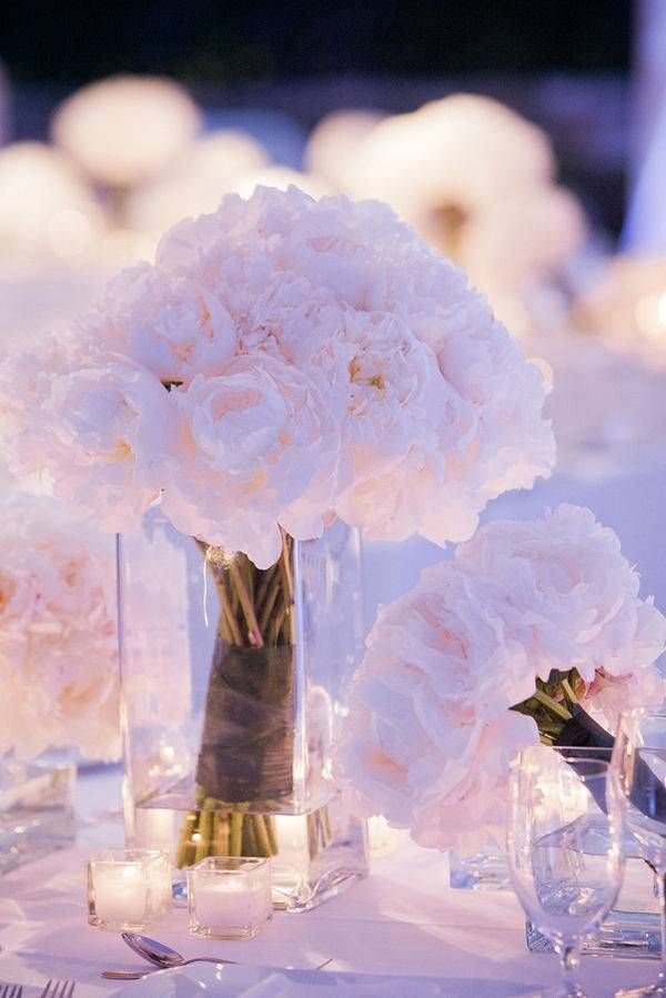 Pioner, wedding