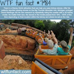 Disney attraction that can help pass kidney stones - WTF fun fact