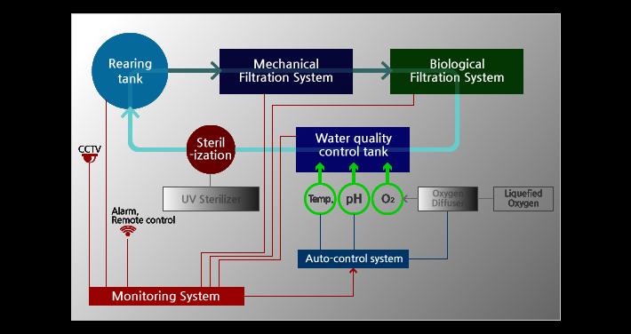 High Density RAS | FISHVIL - Recirculating Aquaculture Systems
