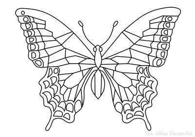 Motyl Kolorowanka Kolorowanka Motyle Kolorowanki