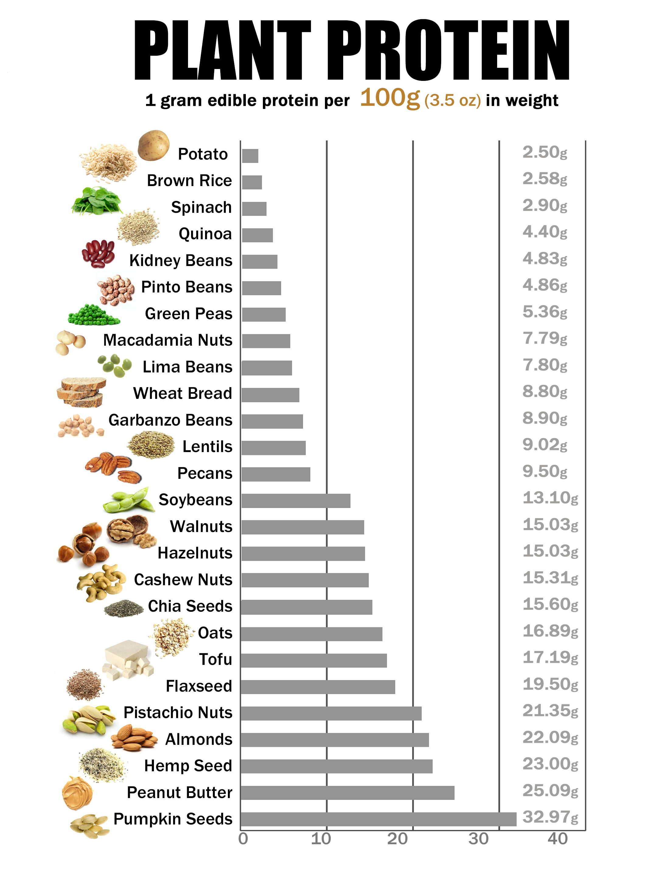 Image result for plant protein per 100g