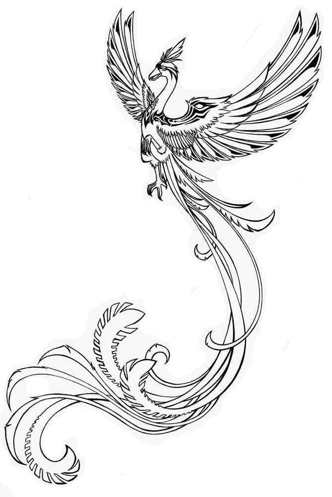 Magbird4 Tatuirovki S Izobrazheniem Feniksa Dizajn Tatuirovok S Izobrazheniem Feniksa Dizajn Tatuirovok