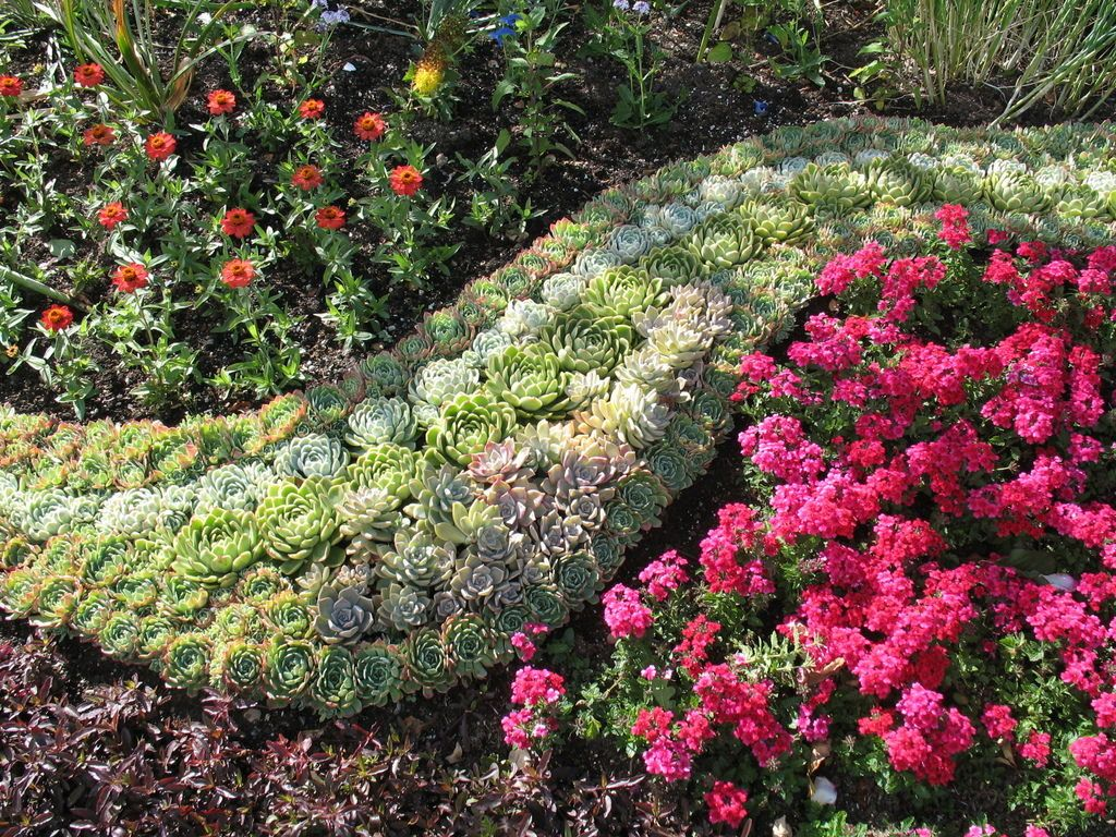 Цветники и клумбы своими руками на даче фото цветущее всё лето фото фото 628