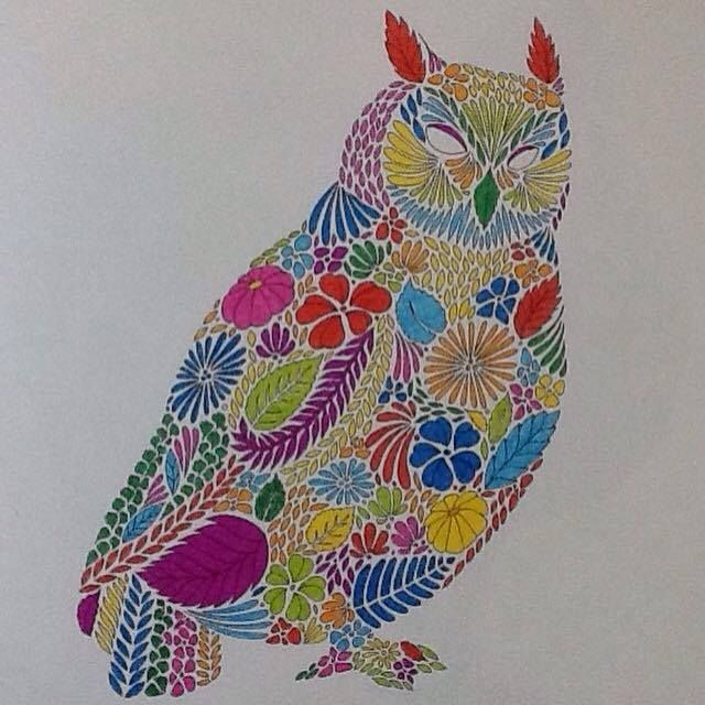 Coloring Ideas Owl Animal KingdomColoring BooksOwl