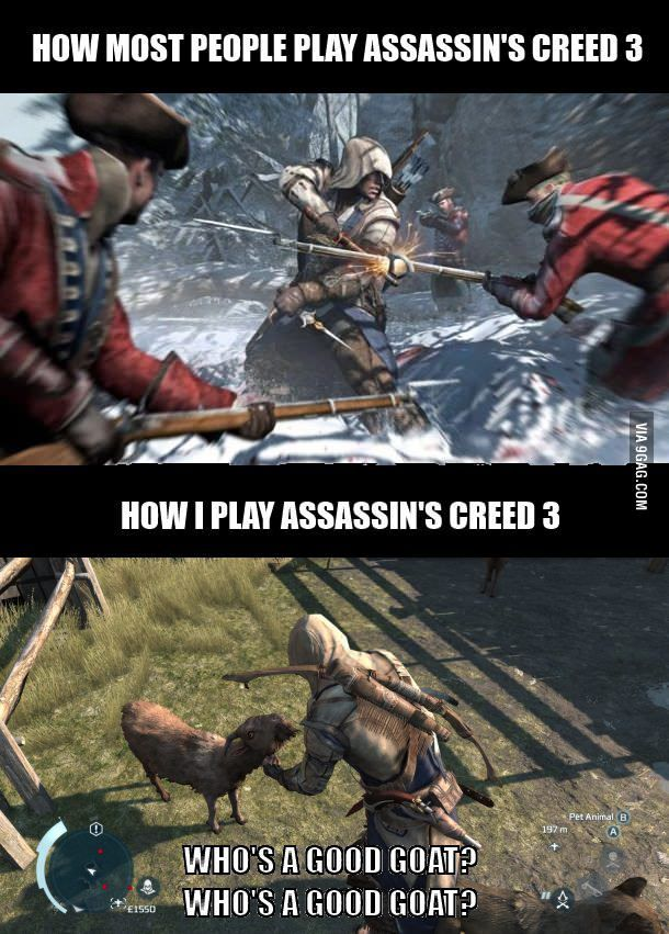 Assassin S Petfarm 3 With Images Assassins Creed Funny