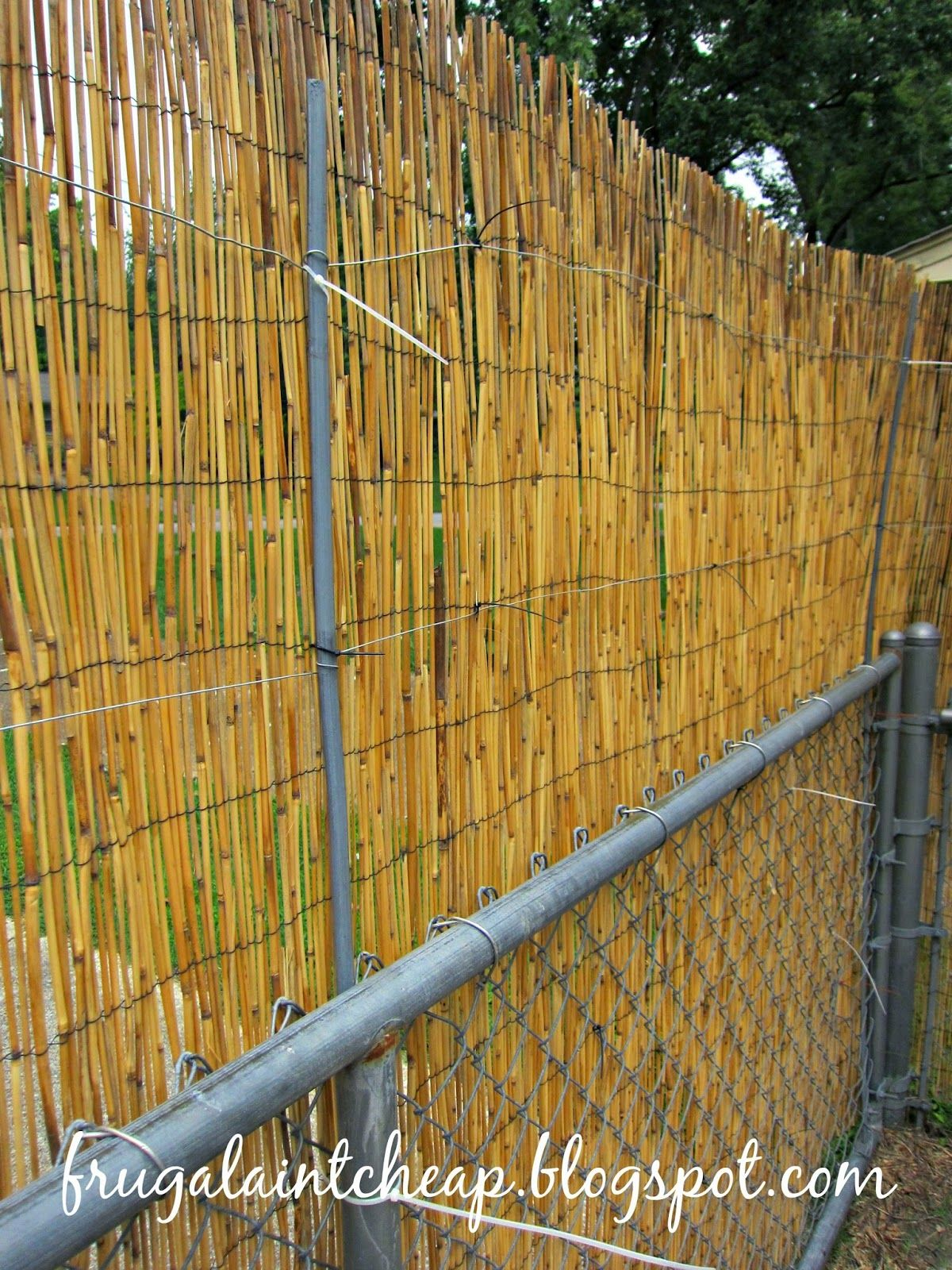 Chain link fence project chain link fence bamboo fence