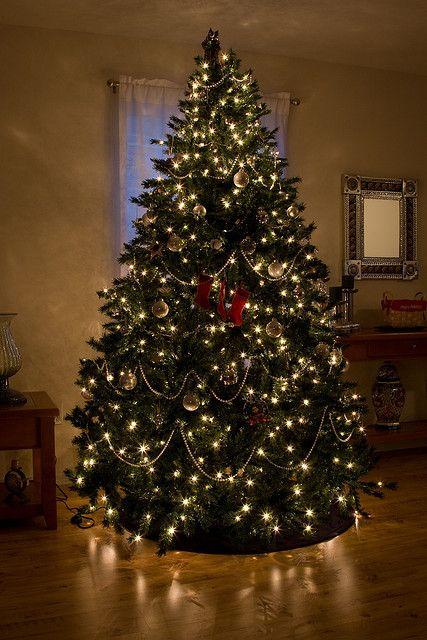 Mi Casa Su Casa Entao E Natal Arvore De Natal Dourada