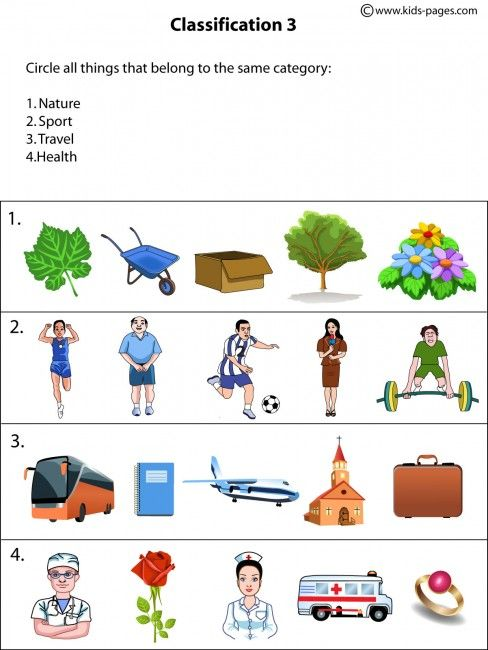 Classification3 Worksheets