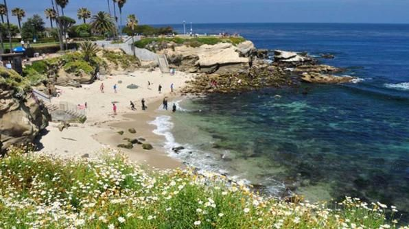 You'll have to leave the surfboards and boogie boards behind, but trust us it will be worth it. La Jolla Cove is the most desired area for swimming, snorkeling and diving