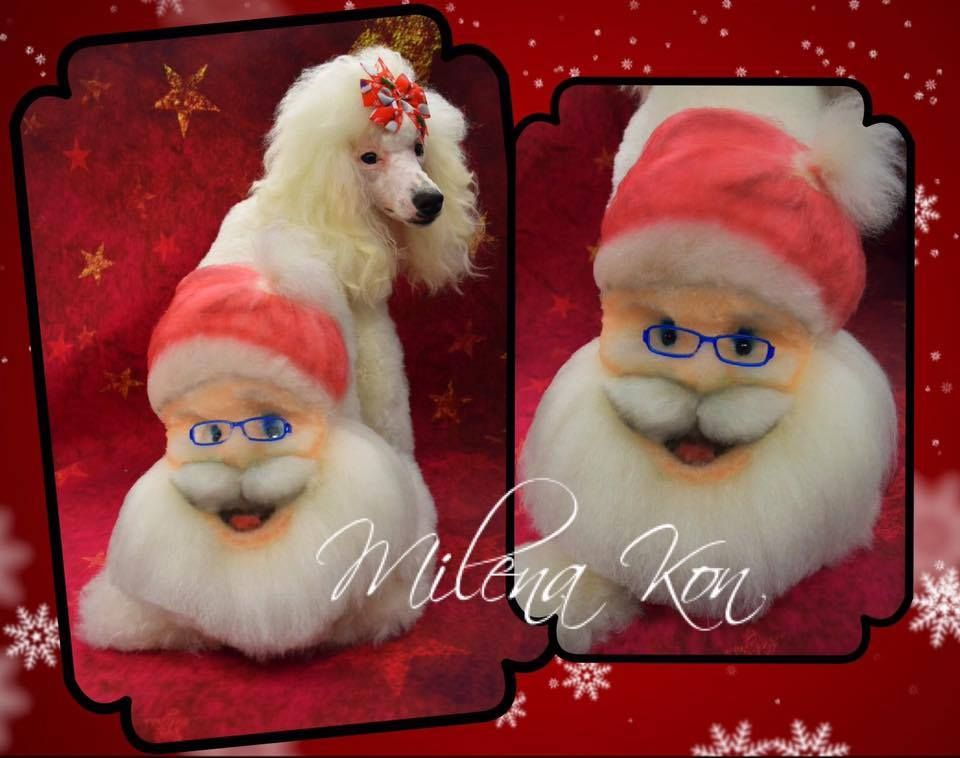 Cant Believe This Is Done By A Groomers Hand The Santa Looks