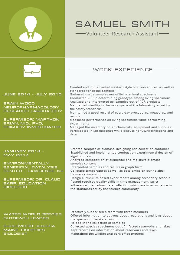 Resume Example 2016 Templates Which One Should You Choose Administrative Assistant Samples It Art Director Examples