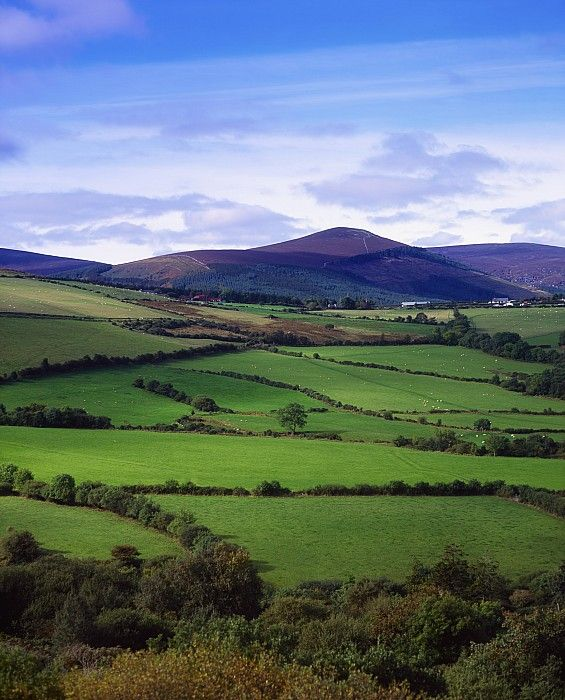 Sugar Loaf Mountain, County Wicklow, Ireland