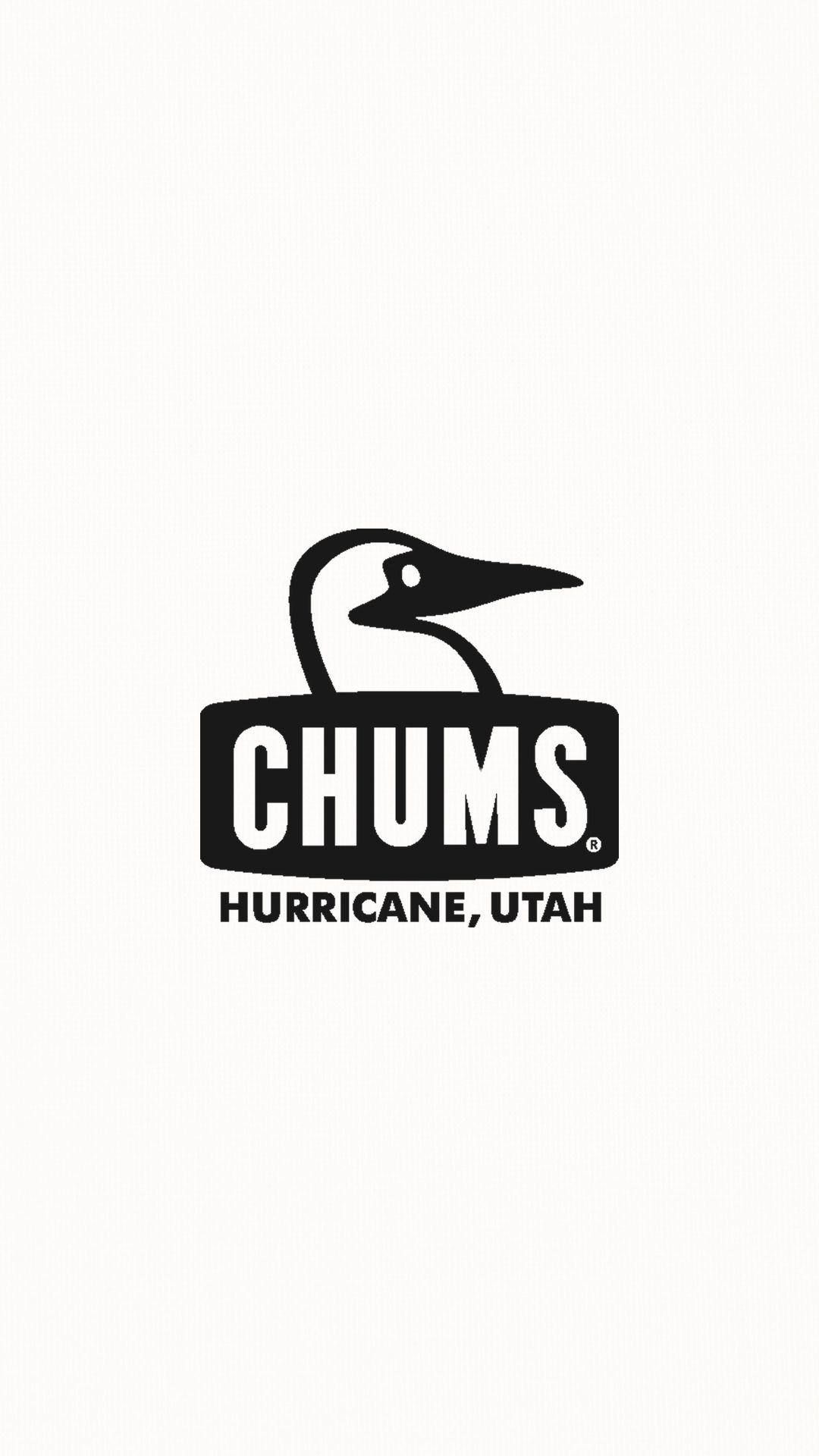 Chums42 キャンプ イラスト チャムス ステッカー 鳥のロゴ