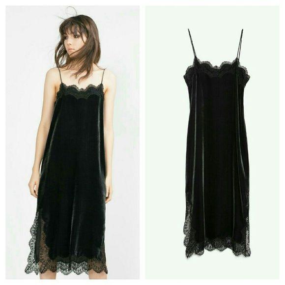 Zara velvet studio dress (8187) New with tag. Outer shell 82% viscose 18% silk (mulberry)  Studio velvet dress. Lace trim Zara Dresses