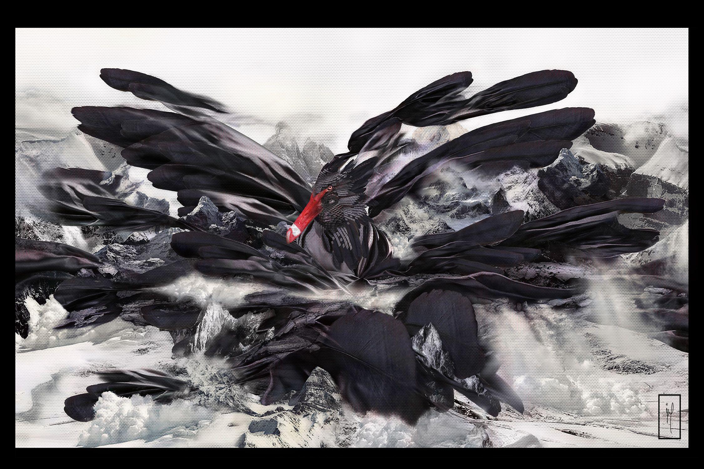 THE RISE OF THE BLACK SWAN https://society6.com/gabor_paszti https://www.curioos.com/gaborpaszti https://www.teepublic.com/user/gabor_paszti https://instagram.com/gabor.paszti https://www.facebook.com/GaborPasztiFunPage