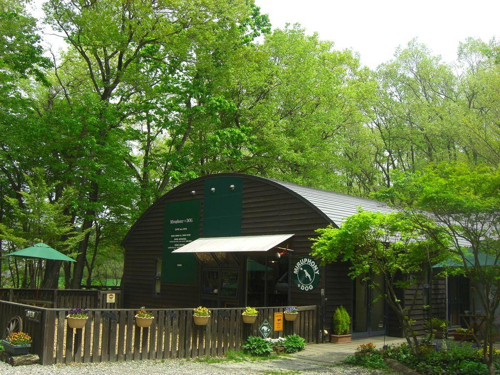 那須町のドッグカフェ カフェ 喫茶店といえば ミルフォニー Dog 那須町高久乙796 10 那須高原の森に囲まれた広々とした空間のカフェ 愛犬も一緒にどうぞ 町 カフェ 喫茶店