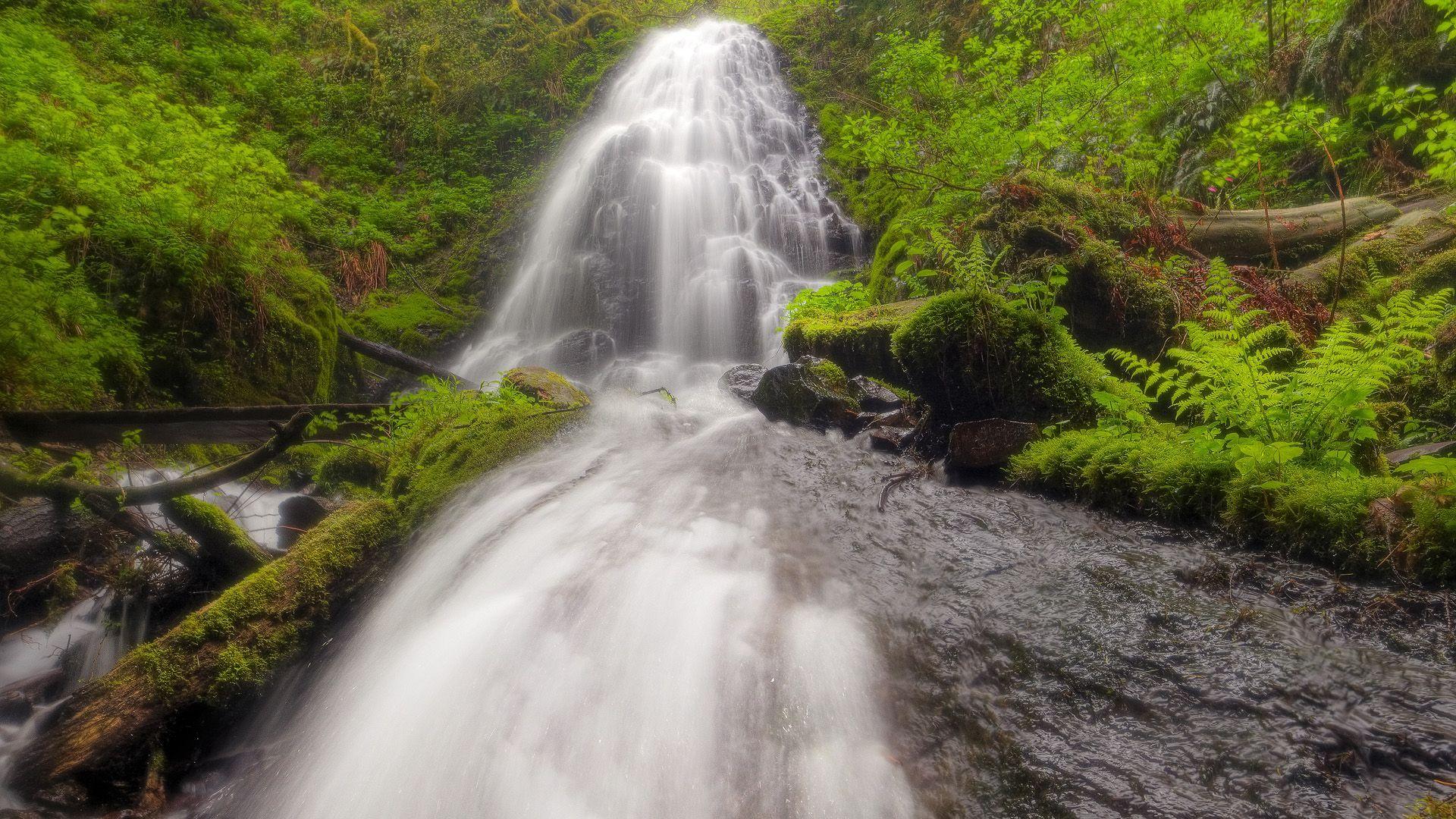 Fairy Falls, Columbia Oregon Cool landscapes