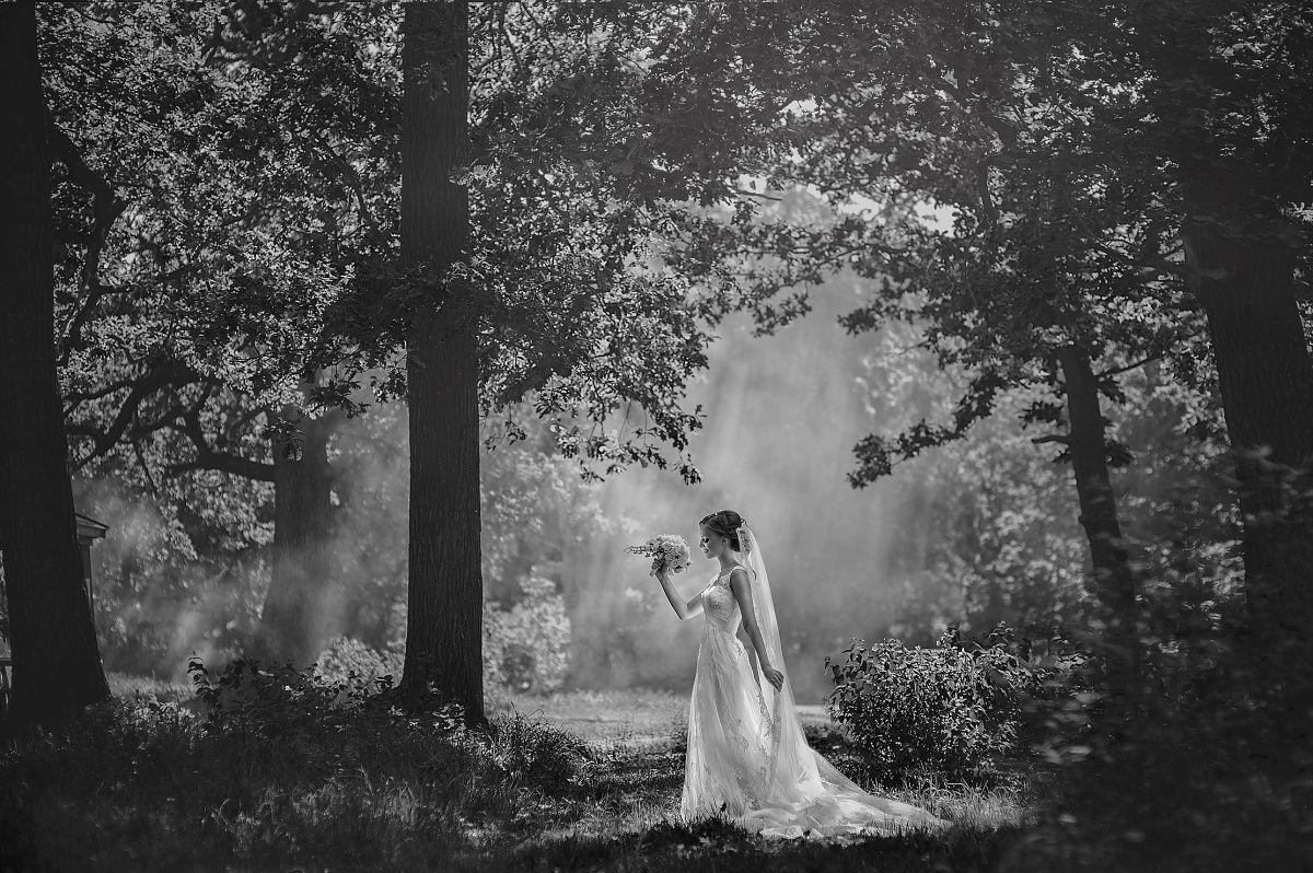 Свадебная фотография от 18.05.2013 Фотограф: Юлия Логинова (Asoli)