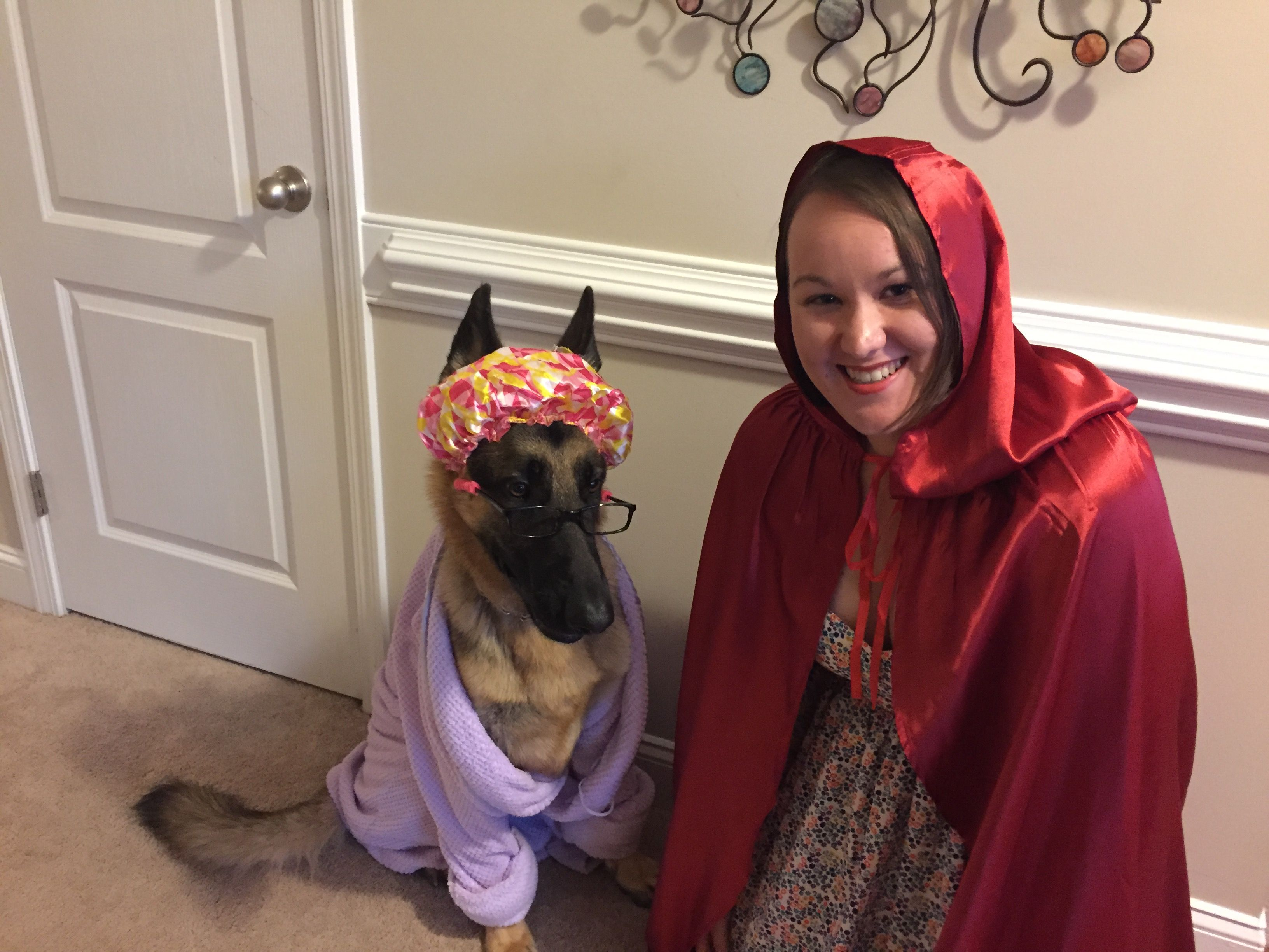 A German Shepard Dressed Up As Grandma In Disguise As Big Bad Wolf