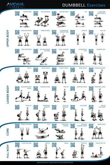 Dumbbell exercise poster  workout with exercises and qr codes to video demonstrations help you build muscle burn fat also chart pdf pinterest rh