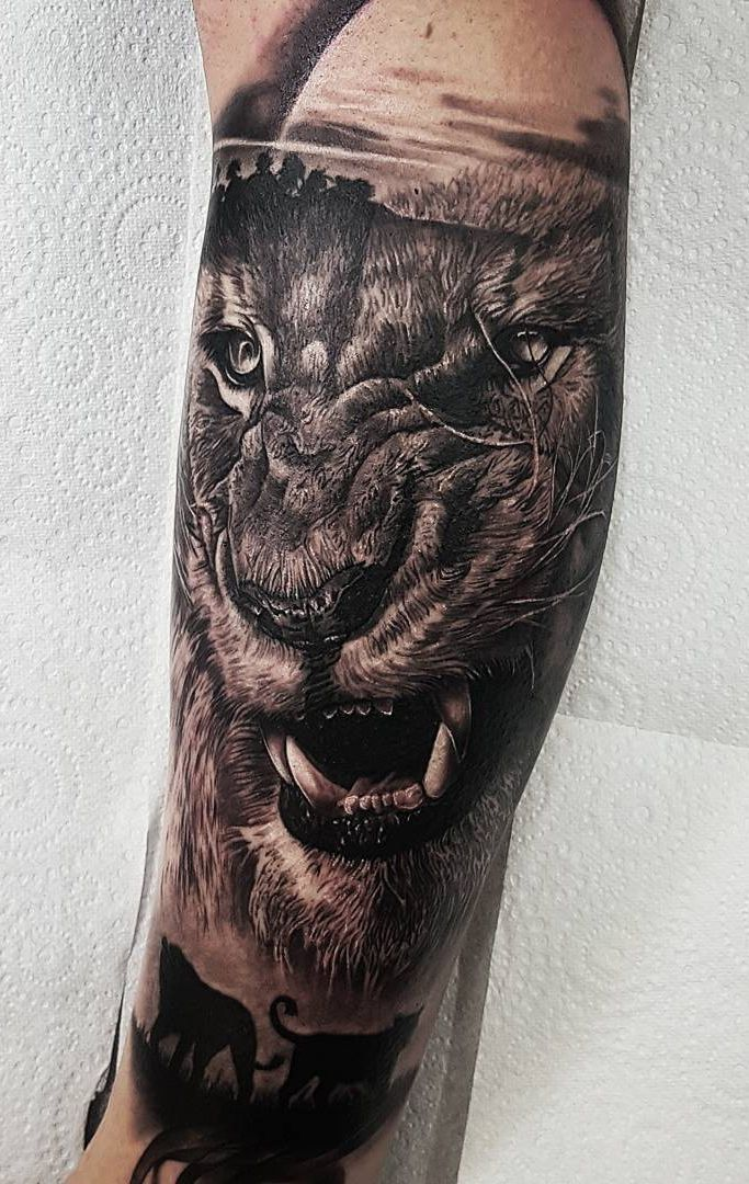 Lion Morph Tattoo: Realistic Tattoos With Morphing Effects By Benji Roketlauncha