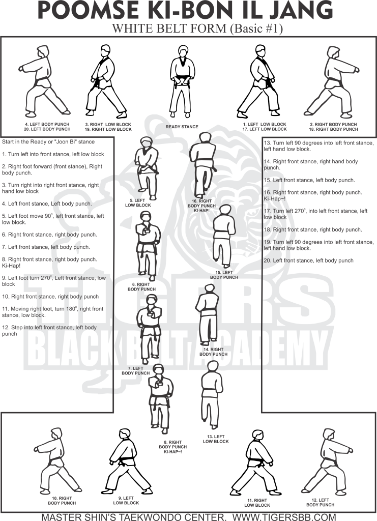 Easy to follow instructions to learn the taekwondo form