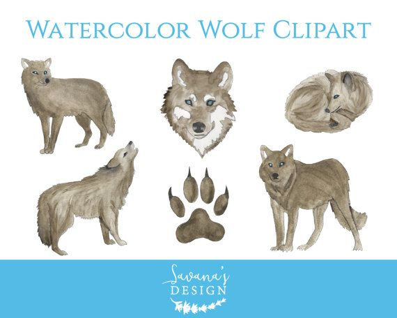 Watercolor Wolf Clipart, Wolf Clipart, Wolf Claw, Watercolor Wolves ...