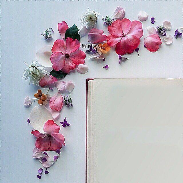 خلفية من حساب A Aisha87 A Aisha87 A Aisha87 خامات خلفيات للتصميم مخطوطه مخطوطات للتصاميم سكرا Flower Frame Flower Border Leaf Photography