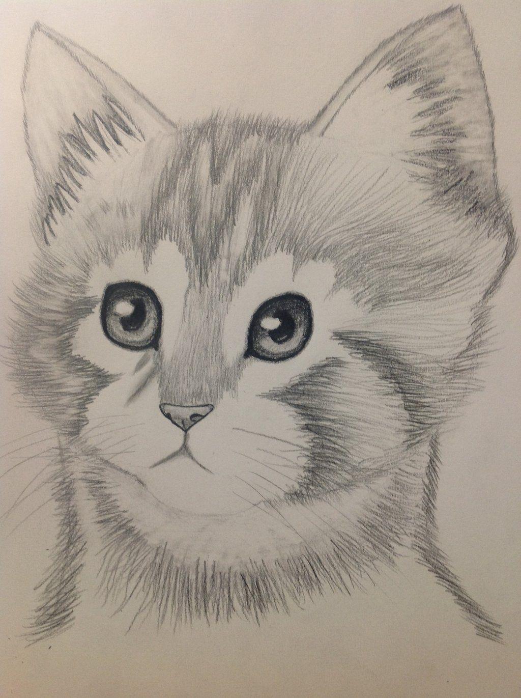 Pencil sketches of animals pencil drawing pictures cartoon pencil drawing pictures to draw
