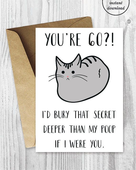Funny 60th Birthday Cards Printable Cat 60 Birthday Card Getting