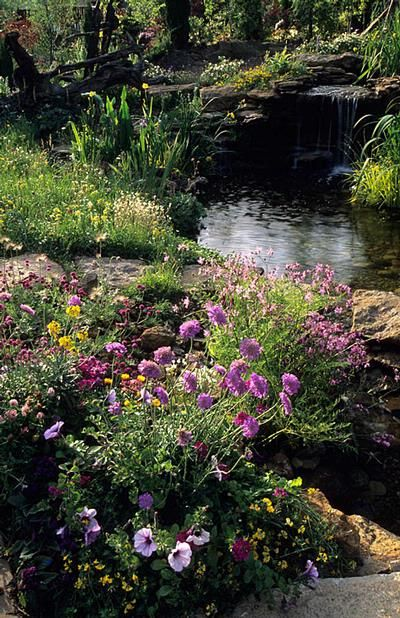 Butterfly Garden Design: Marnie Hall Flowery Mead Beside Stream